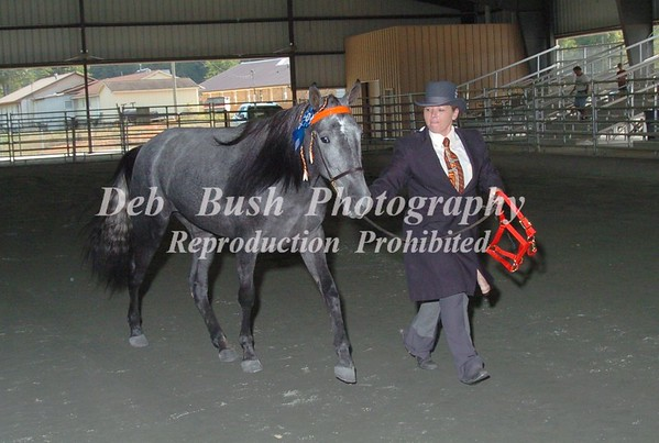 CLASS 1 WEANLING AND YEARLING