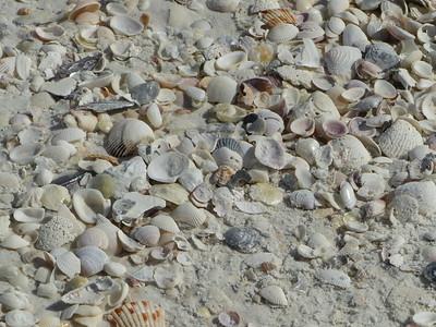 Florida 12 25 2015 Lover's key Bowditch beach