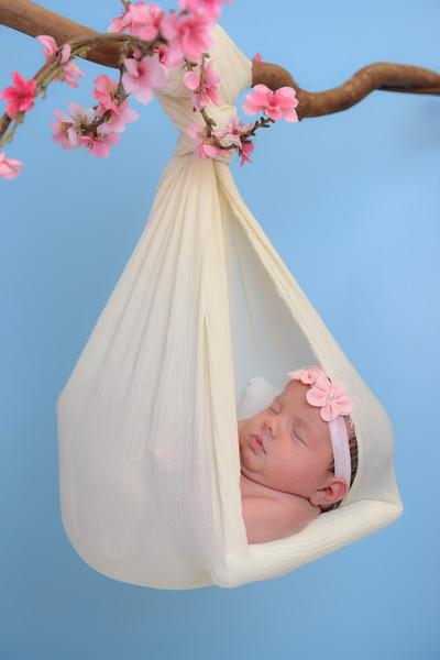 Newborn - Reyenger -0022.jpg