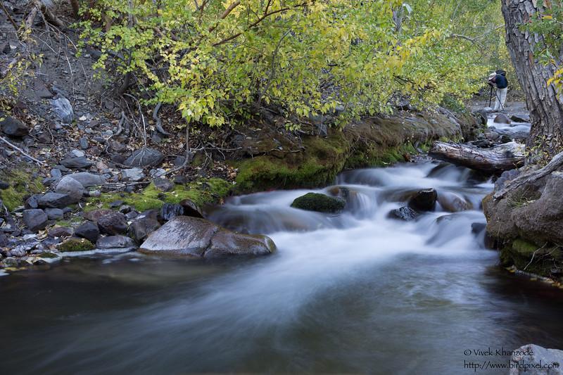MgGee Canyon Campground - Near Mammoth Lakes, CA, USA