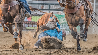 Payette County Pro Rodeo 2018 (New Plymouth, ID)