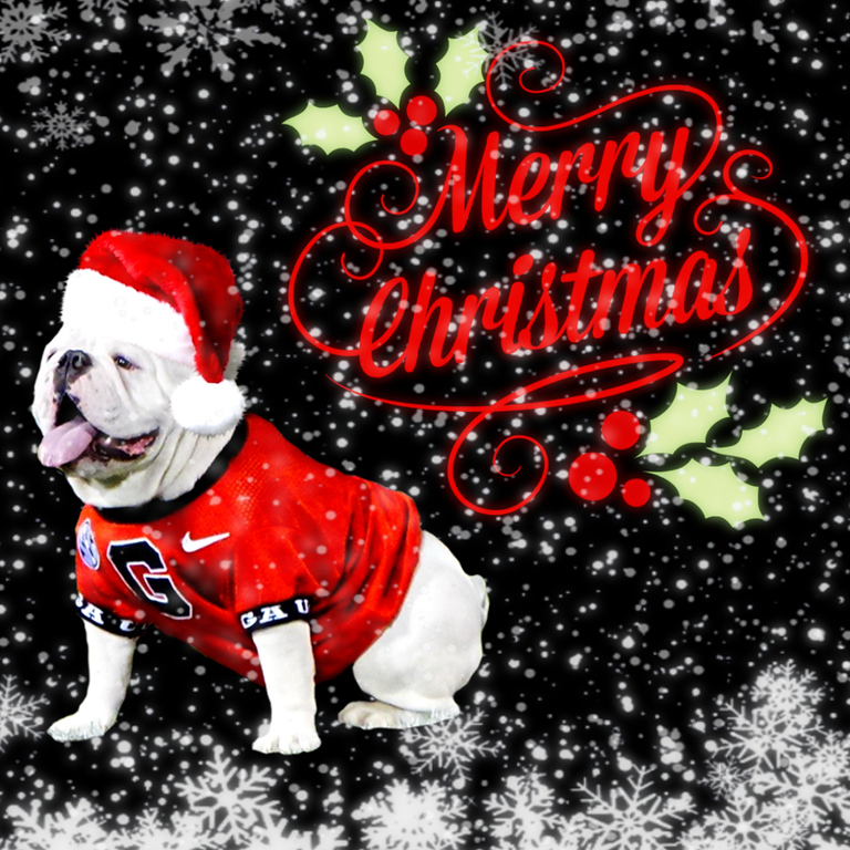 2019-12-25 Christmas Day - Daily Dawg Thread graphic edit with WONDERFUL and SNOW effects by Bob Miller