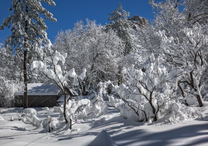 Cuyamaca snow002.jpg