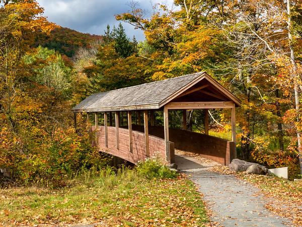 2020 Autumn in the Noprthern Catskills