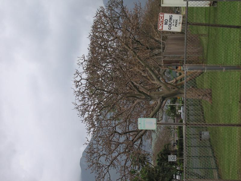 20070108_000081.JPG