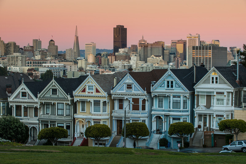 Painted Ladies (2013-01-20)