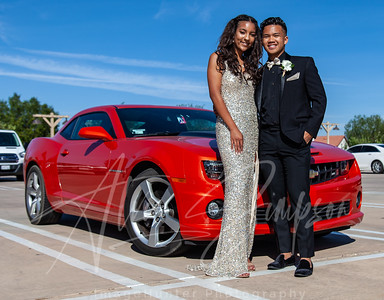 Sydney Simpson Great Oak Prom 2019