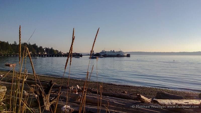 Woodget-130912-002--ferry, grass - Plants, ocean - 15071001, ocean - water, Peuget Sound, seaside.jpg
