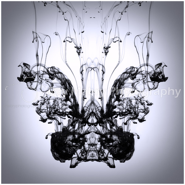 Ink in Motion 013