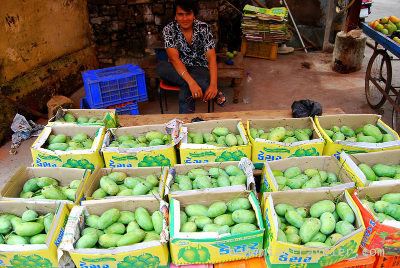 selling mangos in Junagadh.jpg