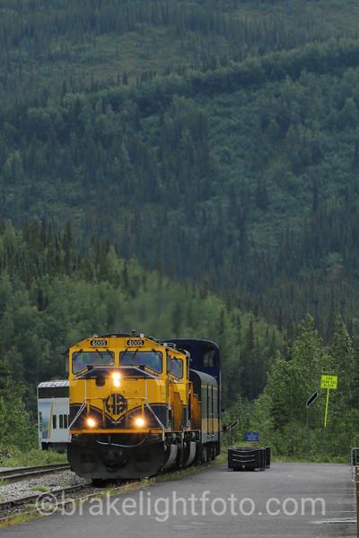 Alaska Railroad - Denali National Park