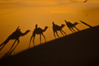 Morocco 2009