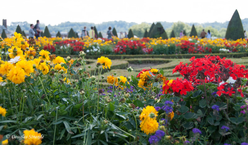 the gardens of Chateau Versailles