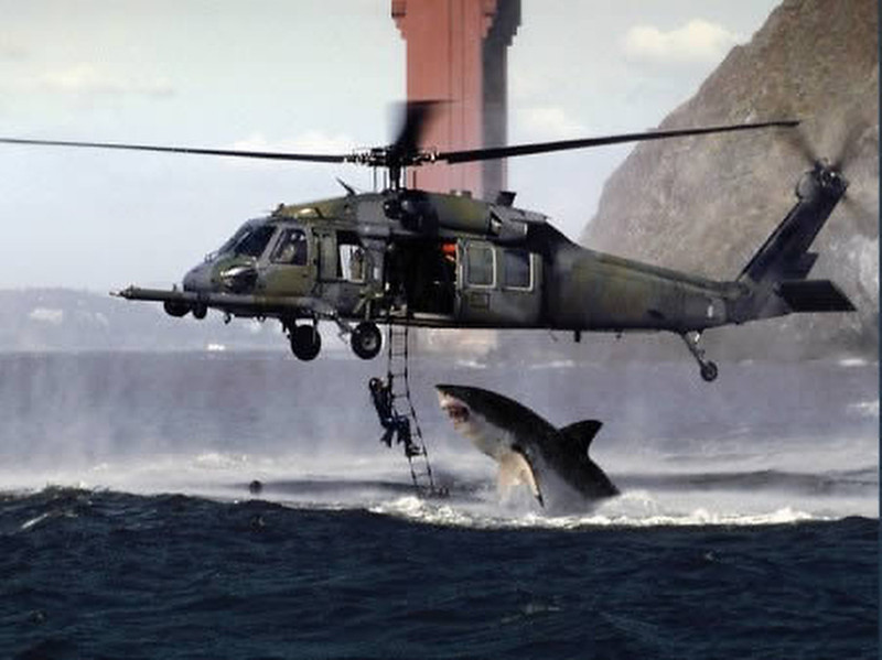 . This fake was created by merging two separate images - a US Air Force helicopter on a training exercise in San Francisco, and a great white shark leaping out of the water off the cost of South Africa.