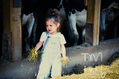 Saturday Farm Time | 5.12.12