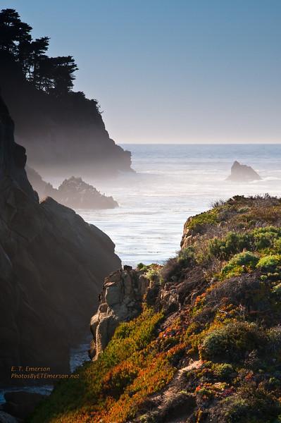 California Central Coast Trip