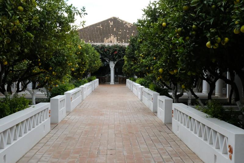 Villa Monte Lower Level Suites