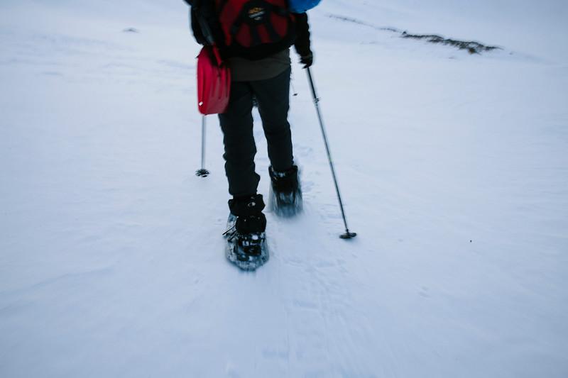 200124_Schneeschuhtour Engstligenalp_web-302.jpg