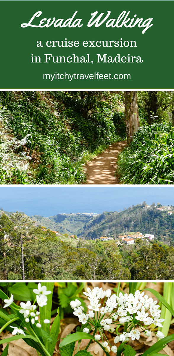 Text on photo: levada walking on a cruise excursion in Funchal, Madeira. Photo: collage of path in the woods, mountains, wildflower closeup.
