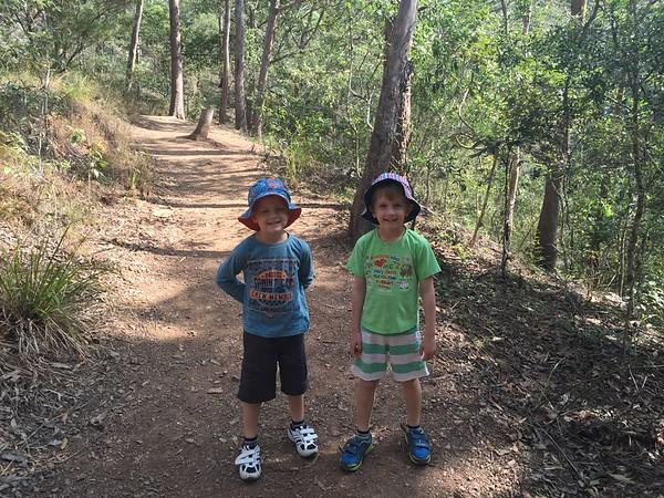 20150726-Mt Coot-tha Bushwalk
