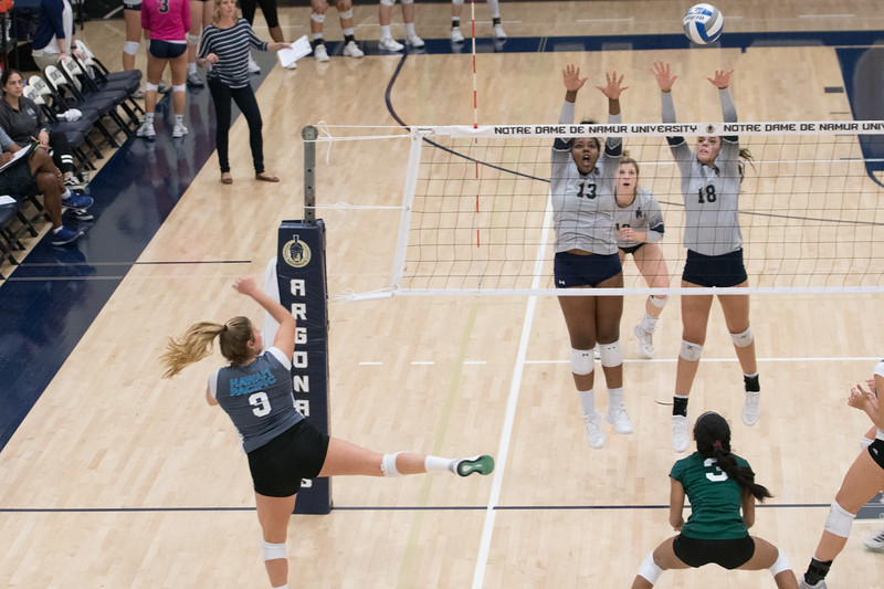 HPU Volleyball-92999.jpg