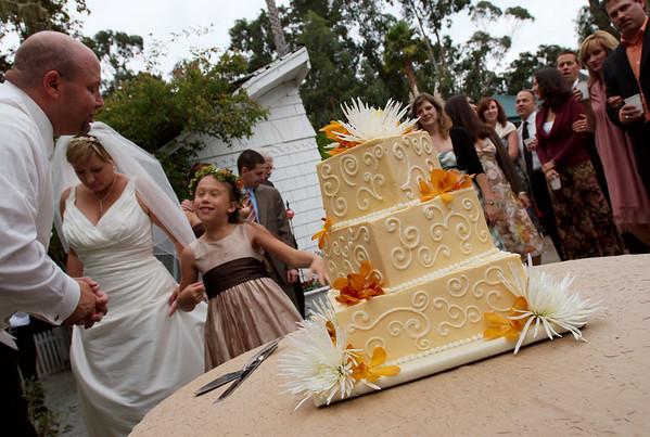 15 Cake Cutting