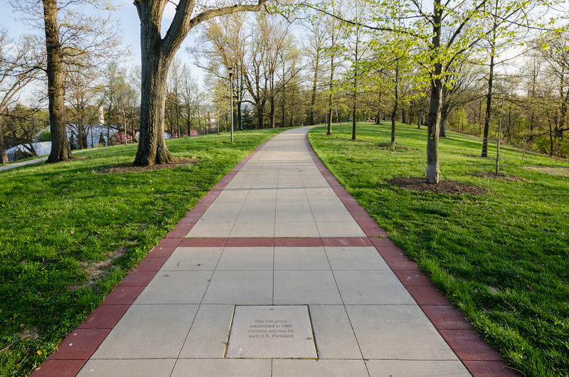 President's Grove of trees, Eden Park, Cincinnati.