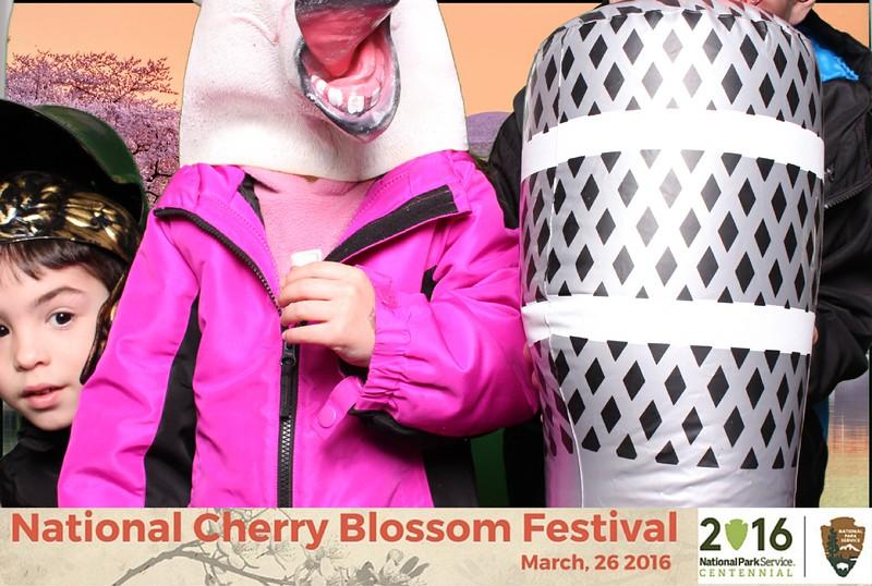 Boothie-NPS-CherryBlossom- (123).jpg