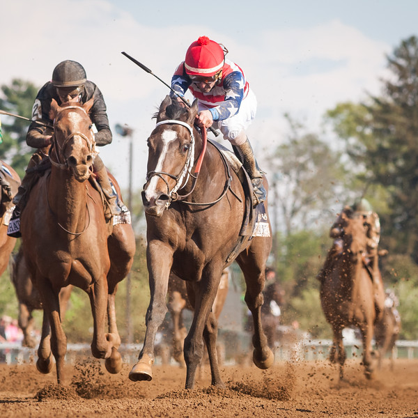 Brooklynsway (Giant Gizmo) wins the Doubledogdare (G3) at Keeneland on 4.22.2016. Robby Albarado up, Bernard Flint trainer, Naveed Chowhan owner.
