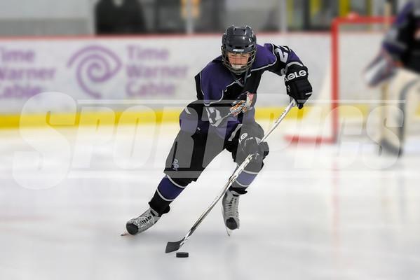 2011-2012 PHA Hockey