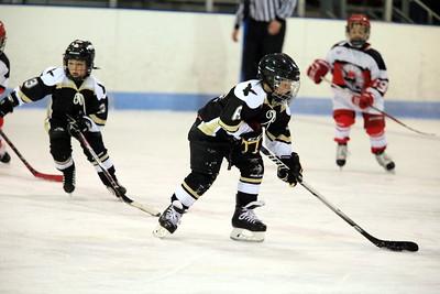 Junior Ice Hawks