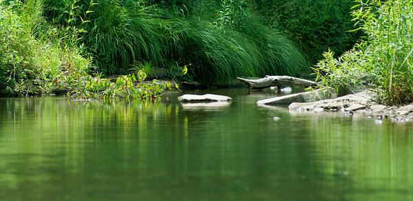 This is the stream that runs through Austin Dam in Austin, Pa http://mapper.acme.com/?ll=41.64096,-78.08688&z=19&t=S&marker0=41.64096%2C-78.08688%2C1.2%20km%20NxNE%20of%20Austin%20PA&marker1=41.63083%2C-78.09361%2CAustin%2C%20Pennsylvania