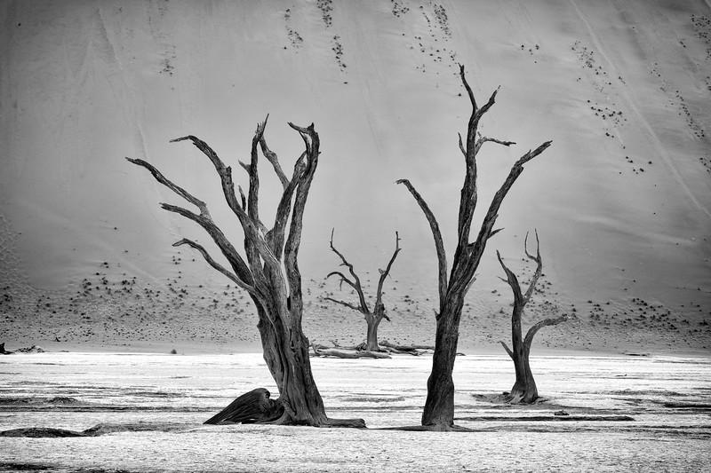 Namibia 69A4161b.jpg