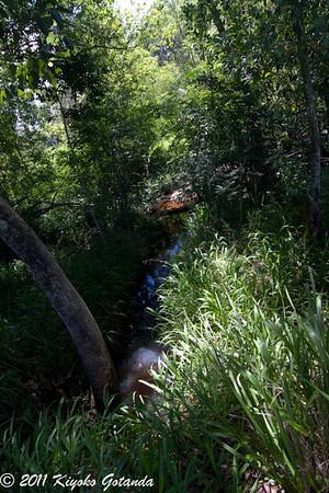 Hydes Creek