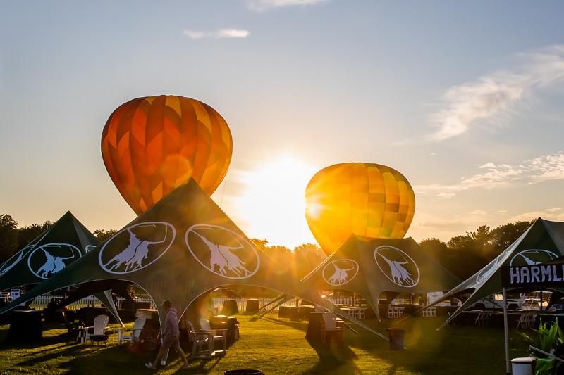 Balloons-0285.jpg