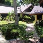 Koh Phi Phi Beach Bungalows