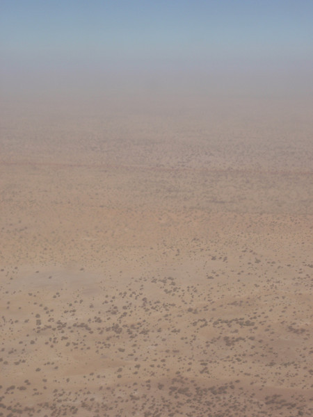 034_Convoys of Camels Would Travel Weeks Across the Sahara.jpg