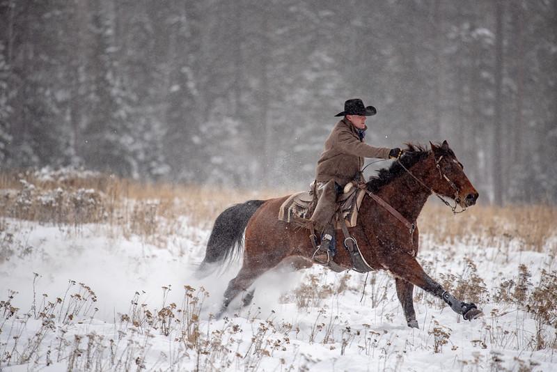 cowboy on horse.jpg