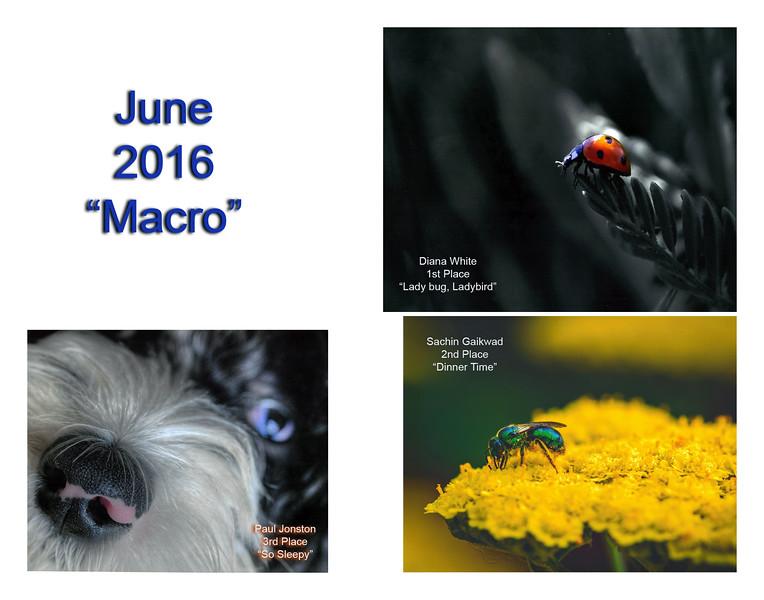 June Composite.jpg