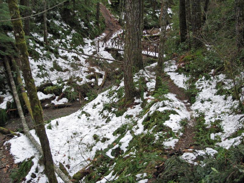 Snow n' trail.