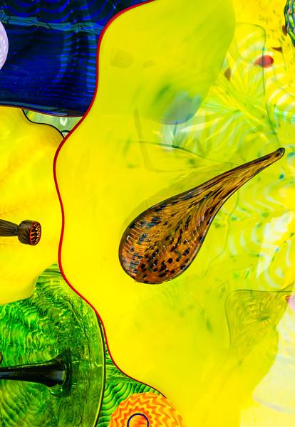 Chihully Garden & Glass