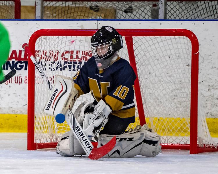 2019-02-03-Ryan-Naughton-Hockey-74.jpg