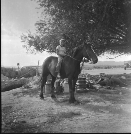 m-phil on horse.jpg