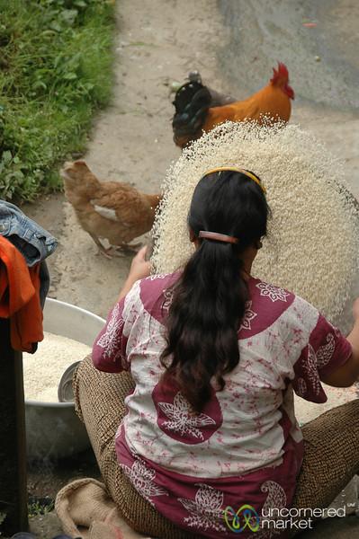 Sifting Through Rice - Yuksom, Sikkim