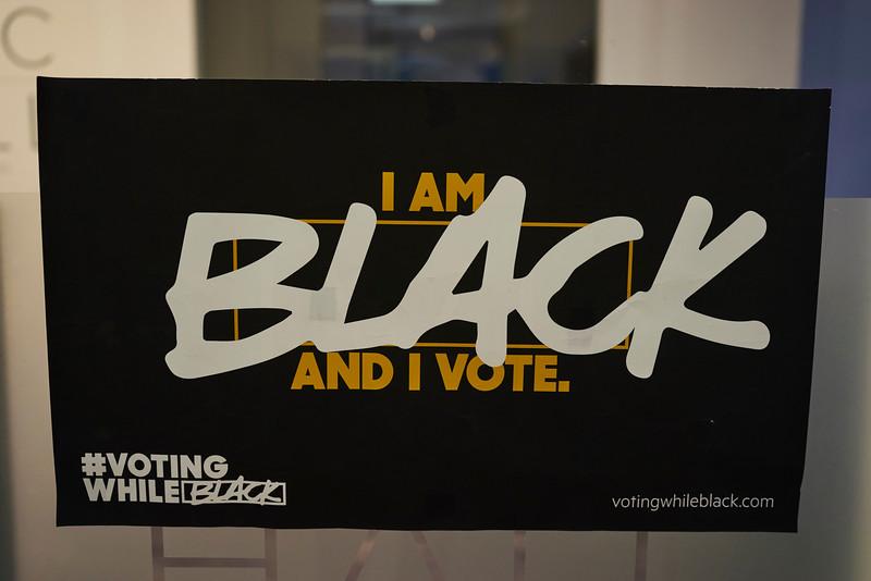 Voting While Black 002.jpg
