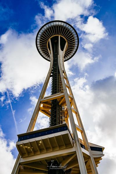 SeattleFPITeamFeb2020-21.jpg
