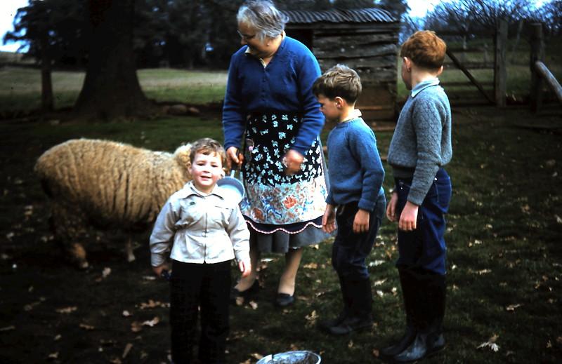 1960-6 (18) Mum with Andrew 2yrs 6 mths, Peter 5 & Tom 7.JPG