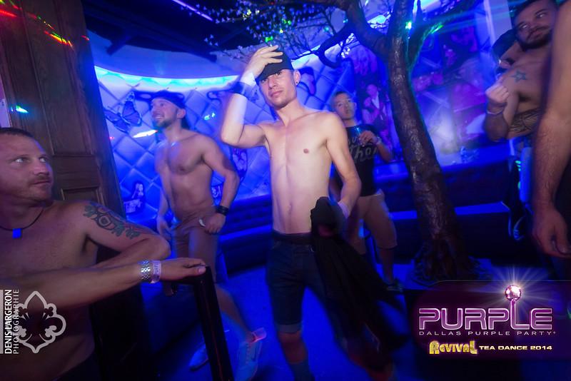 2014-05-11_purple07_059-3257838471-O.jpg