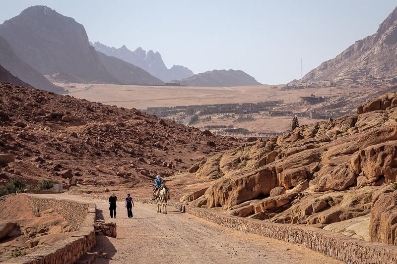2010-03-21-Egypte-1517-Modifier-export.jpg