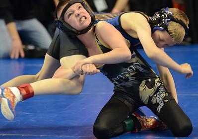 Wrestling - Missouri USA - State